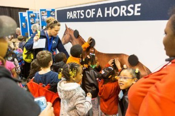 Omaha Equestrian Foundation Opportunity