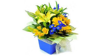 15 Best Blogs To Follow About Birthday Flower Delivery