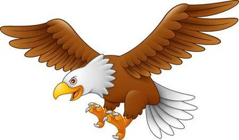 Eagle Spirit Wear