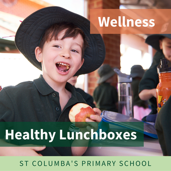 Health lunchboxes