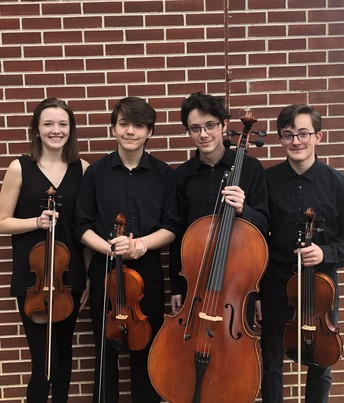 Congratulations - Palissandro Quartet