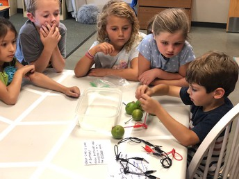 Super scientist of the week, Grant Butts, walked his first grade class through the process of making a lime battery.  Students learned the meaning of the terms: closed circuit, positive and negative charges, along with voltage and electrolytes!  The acidic juice of a lime is a natural electrolyte solution, making it a good source of power to light up a small bulb!