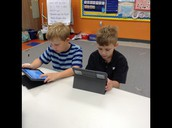 Researching animals living in different regions.