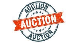 Silent Auction April 1st-April 30th, 2020.