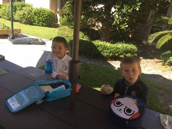 Our picnic lunch