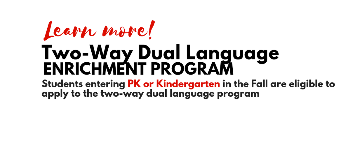 dual language website