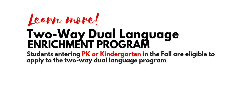 dual language website
