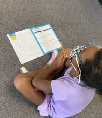Extreme focus and annotation in literature in 3rd Grade
