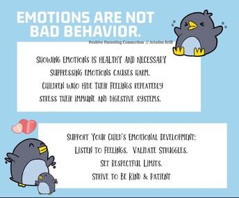 Having Feelings vs. Bad Behavior