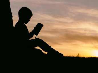 Silhouette of boy reading under a tree at sunset