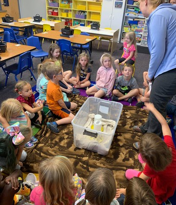 Kindergarten learning about baby chicks