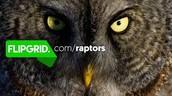 Explorer Series: Raptors