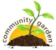 Mill Valley Community Garden