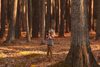 15 Valuable Lessons to Teach Photography for Kids