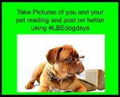 #LBEdogdays