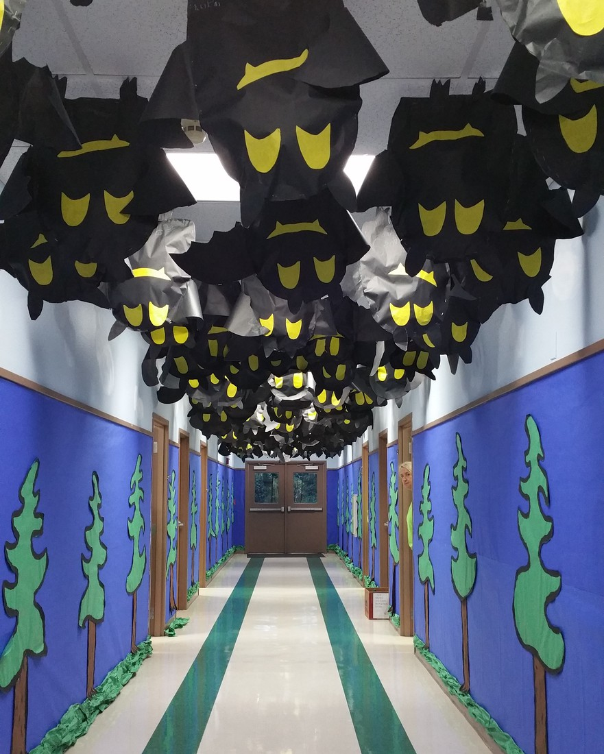 Bats hanging from ceiling