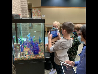 Mrs. Miller's students checking out the new aquarium