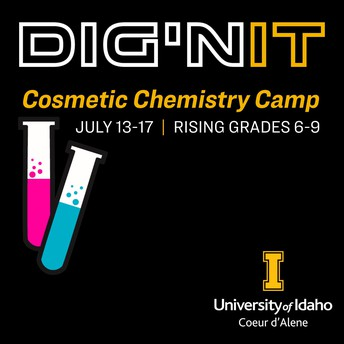 University of Idaho Coeur d'Alene has Dig'n IT Summer Programs