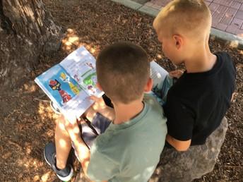 Reading in the Redwood garden