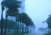 Winds of a hurricane