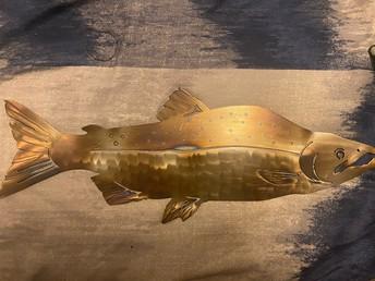 Golden chinook salmon