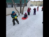 NEW Red Sleds