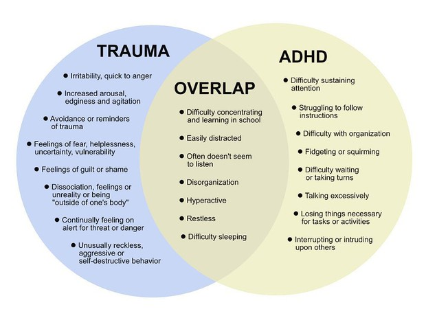 Is It Adhd Or Trauma >> Pmms Brain Beat Smore Newsletters For Education