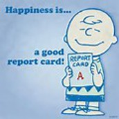 Report Cards/Grades/Progress Report
