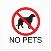 No Pets on Campus