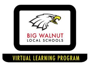 Virtual Learning Program News
