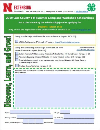 Cass County 4-H Summer Camp, Workshop, and Travel Scholarships