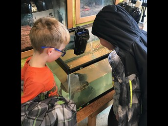 Exploring the Live Animal Room