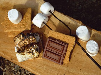 June Team Meet Up - S'MORE STYLE !