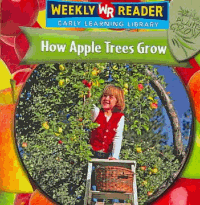 How Apple Trees Grow