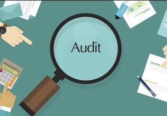 Important Student Placement Audit