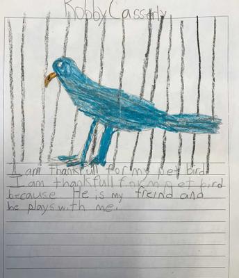 Thankful for my pet bird