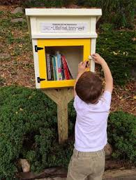 Little Free Libraries Coming to SJE