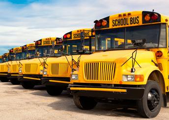 line of buses in bus yard