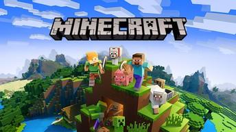 Minecraft Anybody?