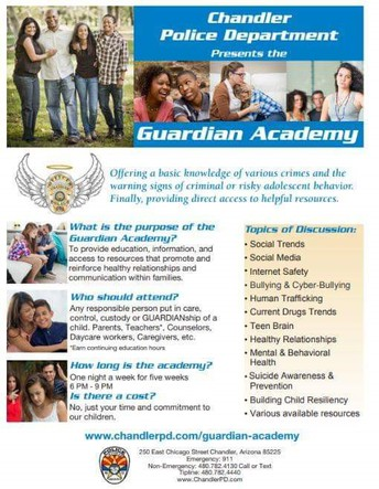 The Guardian Academy