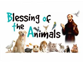 Pet Blessing!