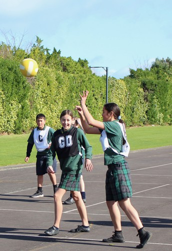MORNING TEA NETBALL RESULTS