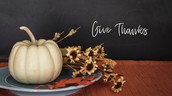 Thanksgiving Dinner - Join Us