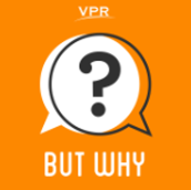 Buy Why? A Podcast for Curious Kids