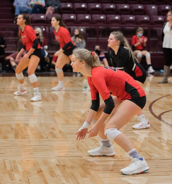 Lady Eagle Volleyball Faces Decatur
