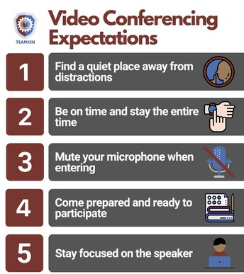 Video Conferencing Expectations