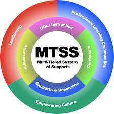 MTSS Meetings