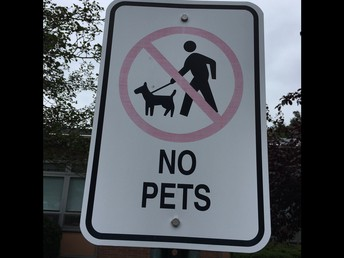 Just a reminder, No Pets are allowed on School Property!  Thank you.
