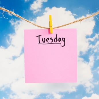 Tuesday, January 19