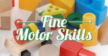 Fine Motor (OT) Resources